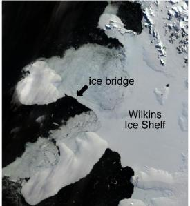 090404wilkins-ice-shelf