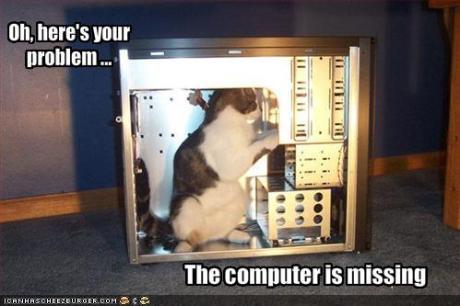 090501cat-fixes-your-computer