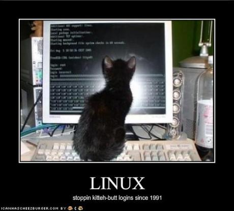 090502your-kitten-uses-linux