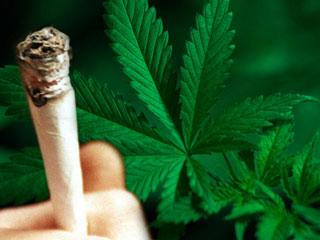090703marijuana