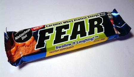 090703onion_fear