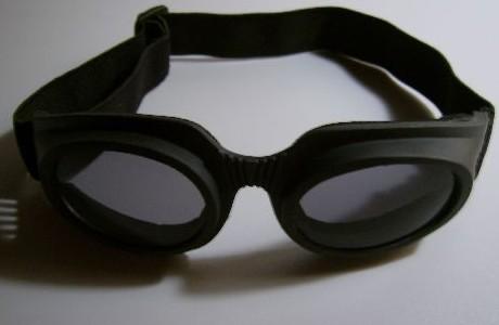 090804riddick_brille