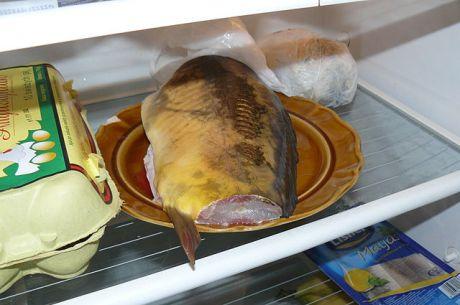 640px-Carp_in_the_refrigerator