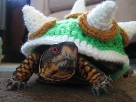 bowser turtle
