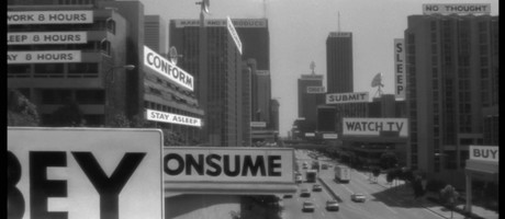 they live_panorama