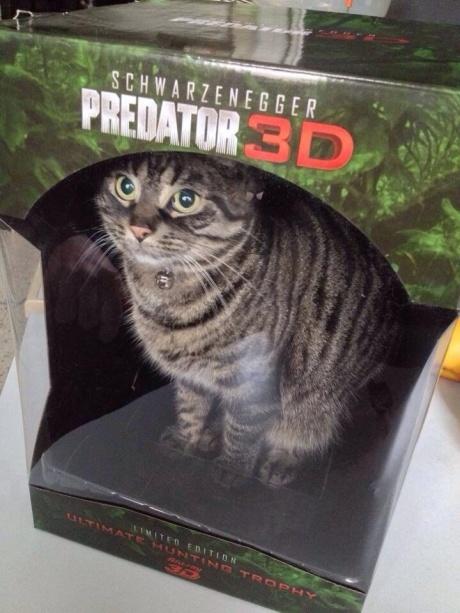 predator3d
