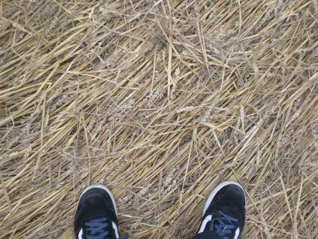 raisting_feet