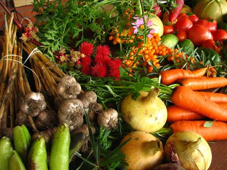 organic_vegetables