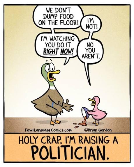 raisingpolitician