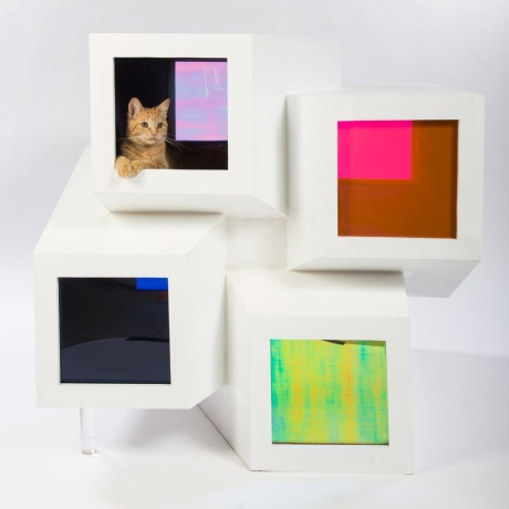 catleidoscope-purrrkins-will-perkins-will-architects-for-animals