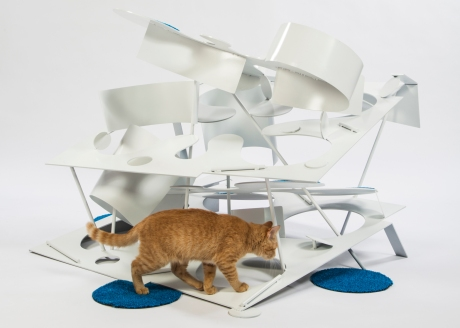 kitty-kurves-lehrer-architects-architects-for-animals
