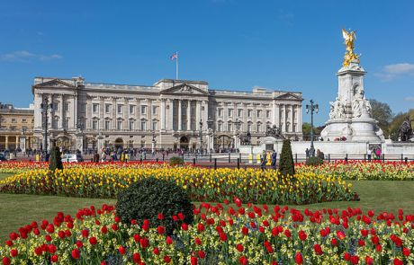 Buckingham_Palace_from_gardens,_London,_UK_-_Diliff