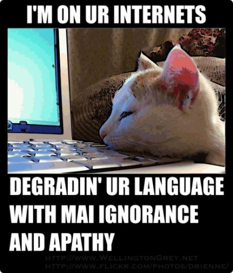 lolcat-language